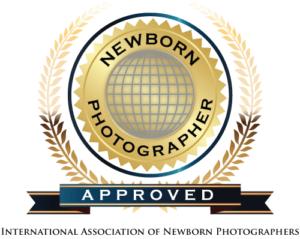 INP-logo-300x239